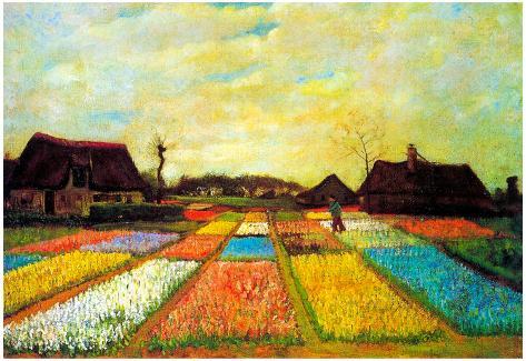 Vincent Van Gogh Holland Flower Bed Art Print Poster Poster - at ...