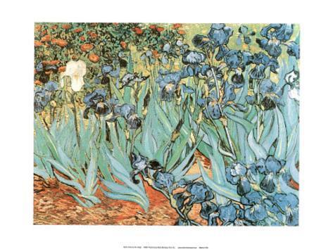 Vincent Van Gogh - Irises, Art Poster Print Mini Poster