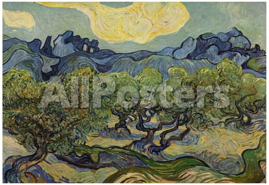 Vincent Van Gogh (Landscape with olive trees) Art Poster Print ...