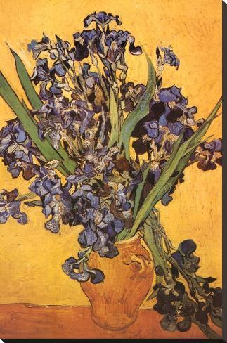 Vincent Van Gogh Les Iris Art Print Poster Stampa su tela