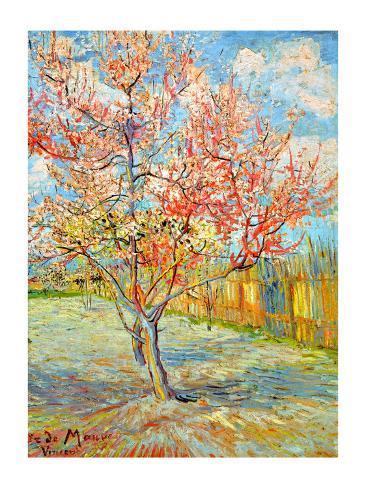Peach Tree in Bloom at Arles, c.1888 Giclee Print