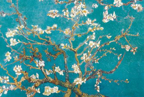 Ramas de almendros en flor, Saint Rémy, c.1890 Póster