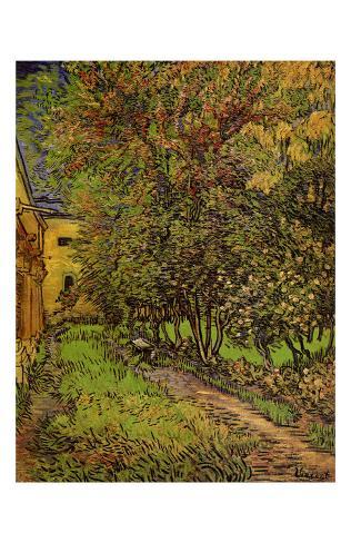 The Garden of Saint-Paul Hospital Framed Art Print