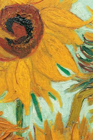 Twelve Sunflowers (detail) Reproducción de lámina sobre lienzo