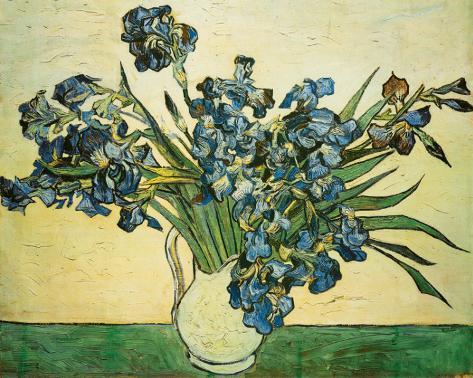 Vase of Irises, c.1890 Stretched Canvas Print