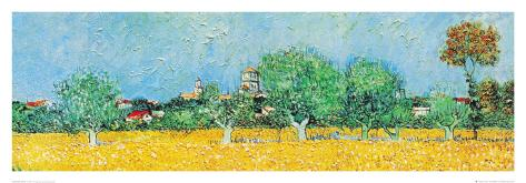View of Arles with Irises (detail) Framed Art Print
