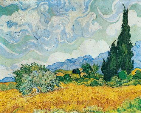 Wheatfield with Cypresses, c.1889 Stretched Canvas Print