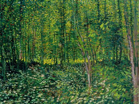 Woods and Undergrowth, c.1887 Giclee Print