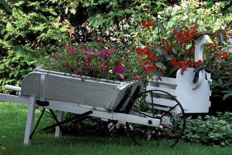 Vintage Wheelbarrow with Flowers Stampa fotografica