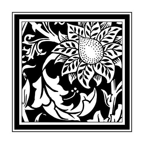 B&W Graphic Floral Motif II Art Print