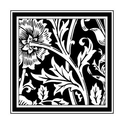B&W Graphic Floral Motif IV Art Print