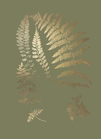 Gold Foil Ferns II on Mid Green Art Print