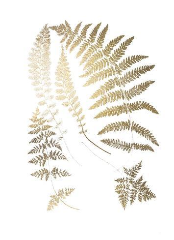 Gold Foil Ferns II Art Print
