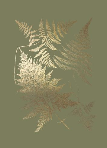 Gold Foil Ferns III on Mid Green Art Print