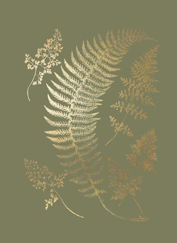 Gold Foil Ferns IV on Mid Green Art Print