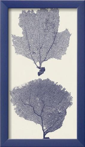 Indigo Seafans I Framed Art Print