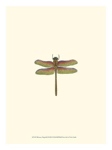 Miniature Dragonfly III Art Print
