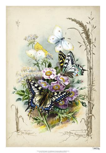 Victorian Butterfly Garden V Giclee Print