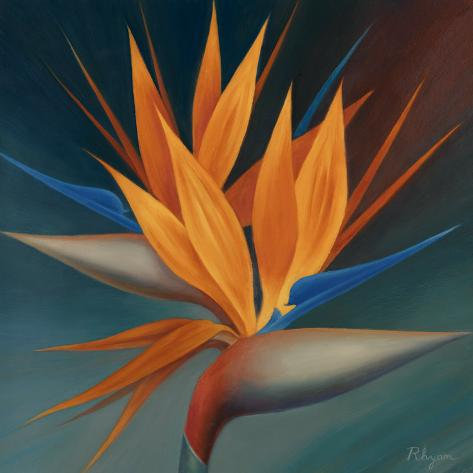Bird of Paradise II Art Print