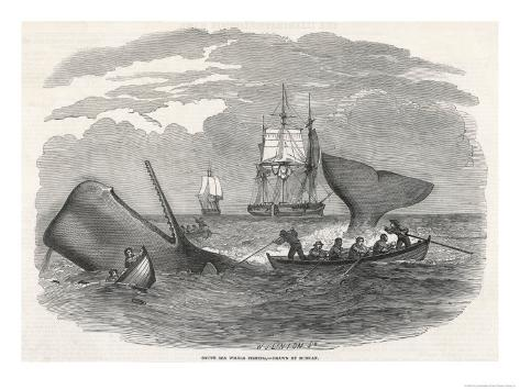 Whaling in the South Seas Giclee Print