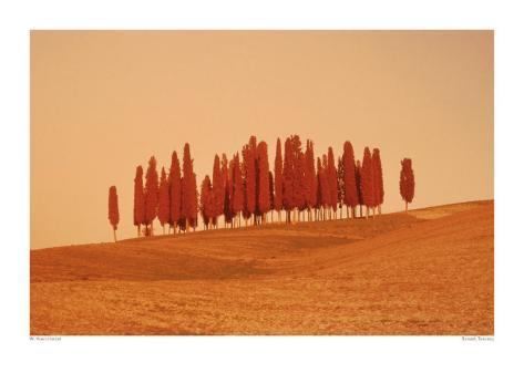 Sunset, Tuscany Art Print