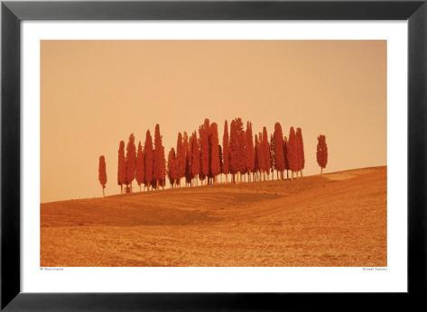 Sunset, Tuscany Lamina Framed Art Print