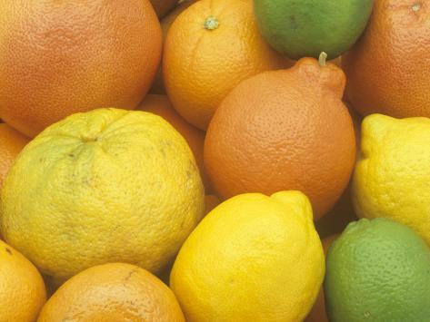 Citrus Fruits. Grapefruit, Tangerine, Ugli, Orange, Lemon, Lime, Tangelo and Clementine Fotoprint