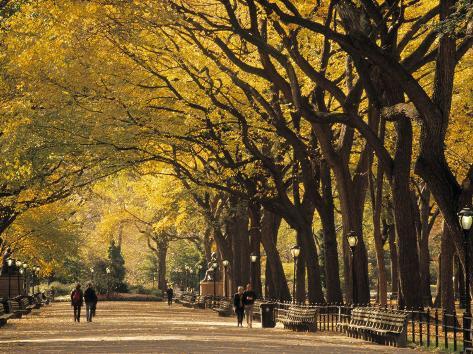 Central Park, New York City, Ny, USA Impressão fotográfica