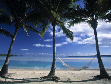 Palms and Hammock, Akitua Motu, Aitutaki, Cook Islands Photographic Print