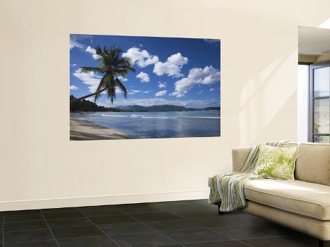 Playa Rincon Beach, Las Galeras, Samana Peninsula, Dominican Republic Wall Mural