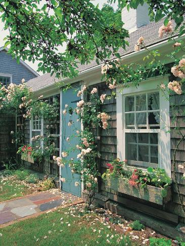 Summer Flower, Doorway, Nantucket, MA Photographic Print