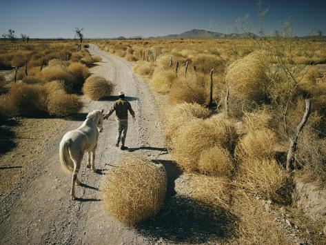 A Man Leads a Horse Down a Dirt Road Photographic Print