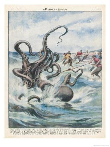 This Giant Polyp was Captured by Fishermen of Portland South Australia Giclee Print