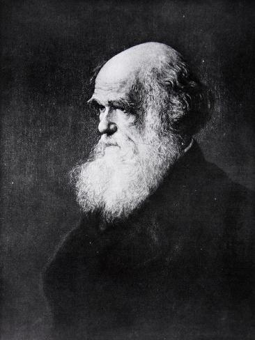 Charles Darwin, Print After the Painting by W.W. Ouless, from The History of the Nation Giclee Print