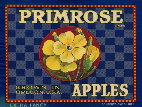 Warshaw Collection of Business Americana Food; Fruit Crate Labels, D.W.C.L. Primrose Brand Taidevedos