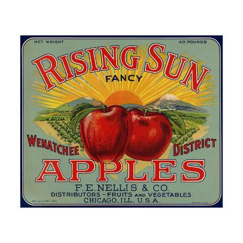 Warshaw Collection of Business Americana Food; Fruit Crate Labels, F.E. Nellis & Co. Taidevedos