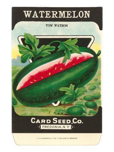 Watermelon Seed Packet Konstprint