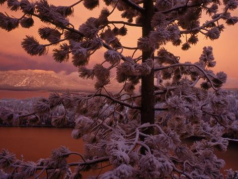 Lake Tahoe at Sunset with Snow, California Photographic Print