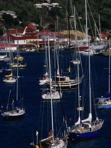 Yachts Moored in Harbour, Gustavia, St. Barts Photographic Print