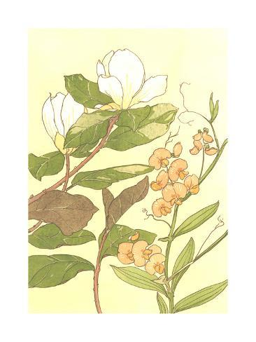 White Magnolias and Sweet Pea Flowers with Stems on Yellow Premium Giclee Print