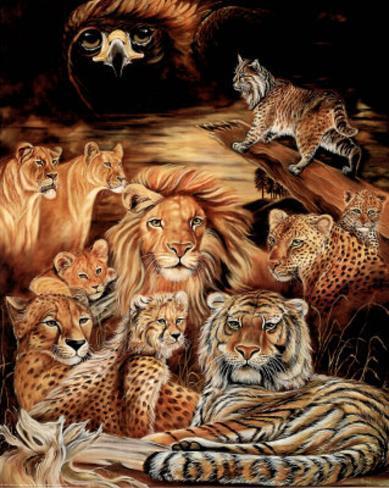 Wild Cat (Montage) Art Print Poster Mini Poster