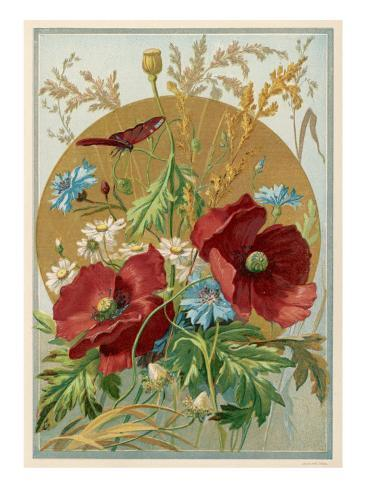 Wild Flowers: Poppies, Daisies and Cornflowers Stampa giclée