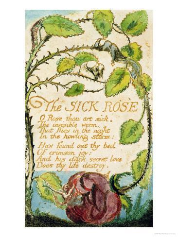The Sick Rose, from Songs of Innocence Lámina giclée