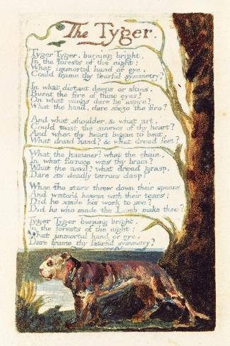 "an examination of the poem the tyger by william blake Analysis of william blake's the tyger william blake has created a fascinating, thought-provoking piece of poetry with ""the tyger"" in this six-quatrain piece, blake has weaved a heavy, complicated issue into a beautiful, poetic work."