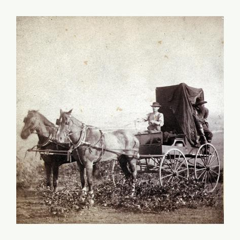 William Gardner in Front and Alex Gardner in the Back 309 Miles West of St. Louis Giclee Print