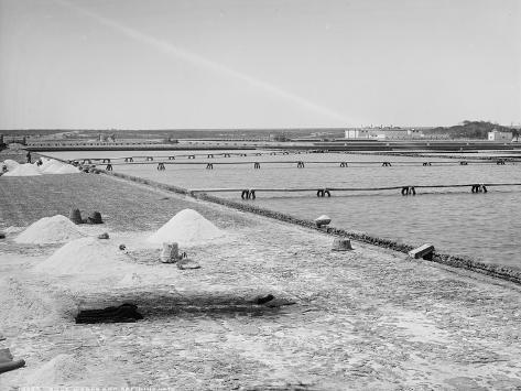 Salt Works and Refining Vats, Mexico, C.1880-97 Photographic Print