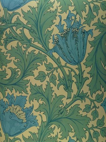 Anemone' Design Giclee Print