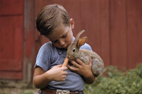 Boy Feeding a Rabbit Photographic Print