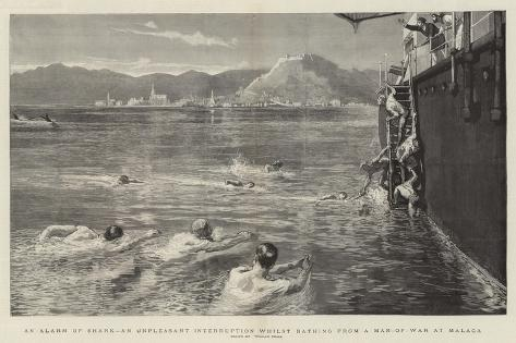 An Alarm of Shark, an Unpleasant Interruption Whilst Bathing from a Man-Of-War at Malaga Giclee Print