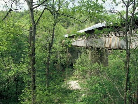 Horton Mill Covered Bridge, Alabama, USA Photographic Print